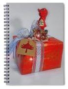 Red Squirrel Gift Spiral Notebook