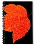 Red Standout Spiral Notebook