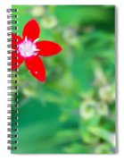 Red Star Spiral Notebook