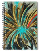 Red Streak Spiral Notebook