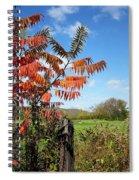 Red Sumac Tree Spiral Notebook