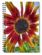 Red Sunflower Spiral Notebook