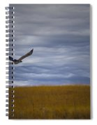 Red Tail Hawk Over The Prairie Spiral Notebook
