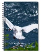 Red Tailed Tropic Bird Spiral Notebook