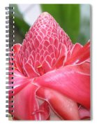 Red Torch Ginger Spiral Notebook