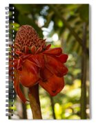 Red Torch Ginger Lily In Hawaii Spiral Notebook