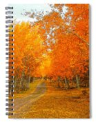 Red Tree Rd Spiral Notebook