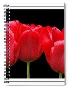Red Tulip Triptych Spiral Notebook