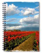Red Tulips Of Skagit Valley Spiral Notebook