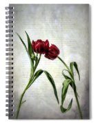 Red Tulips On A Letter Spiral Notebook