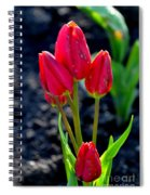 Red Tulips Spiral Notebook
