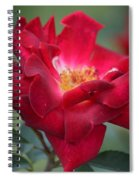 Red Velvet 1a Spiral Notebook