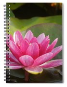 Red Water Lily 4 Spiral Notebook