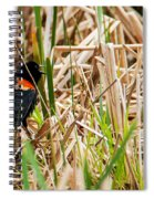 Red-wing Hiding Spiral Notebook