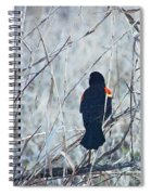 Red Wing Perched Spiral Notebook