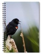 Red Winged Blackbird Singing Spiral Notebook