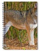 Red Wolf Spiral Notebook