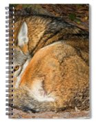 Red Wolf Spiral Notebook