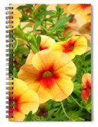 Red Yellow Morning Glories Spiral Notebook