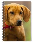 Redbone Coonhound - Man's Best Friend The Hound Dog Spiral Notebook