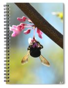Redbud And The Bumble Spiral Notebook