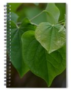 Redbud Hearts Spiral Notebook
