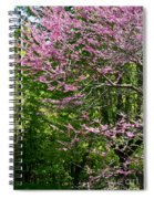 Redbud In The Woods Spiral Notebook