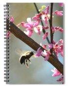 Redbud Morning Spiral Notebook