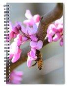 Redbud Pollinator Spiral Notebook
