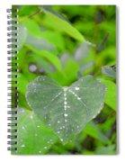Redbud Water Droplets Spiral Notebook