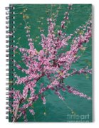 Redbuds Over San Antonio River Spiral Notebook