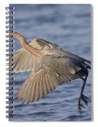 Reddish Egret Dance Fishing Spiral Notebook