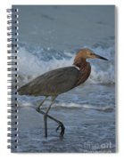 Reddish Walking The Surf Spiral Notebook