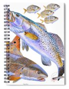 Redfish Trout Spiral Notebook