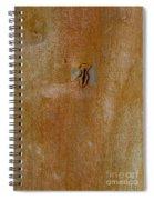 Redgum Tree Spiral Notebook