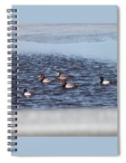 Redhead And Scaups Ducks Spiral Notebook
