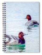Redhead Ducks Spiral Notebook