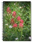 Redish Paintbrush Spiral Notebook