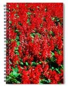Redlicious Spiral Notebook