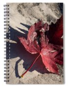 Reds And Purples - Deep Red Maple Leaf And Its Shadow Spiral Notebook