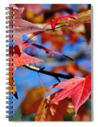 Reds Of Autumn Spiral Notebook