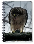 Redtail Hawk And Mouse Spiral Notebook
