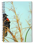 Redwing Lacassine  Spiral Notebook