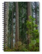 Redwood Lineup Spiral Notebook