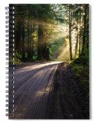 Redwood Magic Spiral Notebook