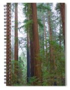 Redwood Trees Spiral Notebook