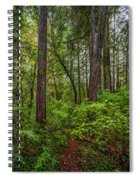 Redwoods 2 Spiral Notebook