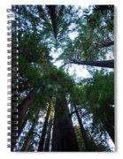 Redwoods II Spiral Notebook