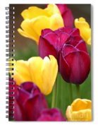 Redyellowtulips6728 Spiral Notebook
