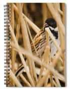 Reed Bunting Spiral Notebook